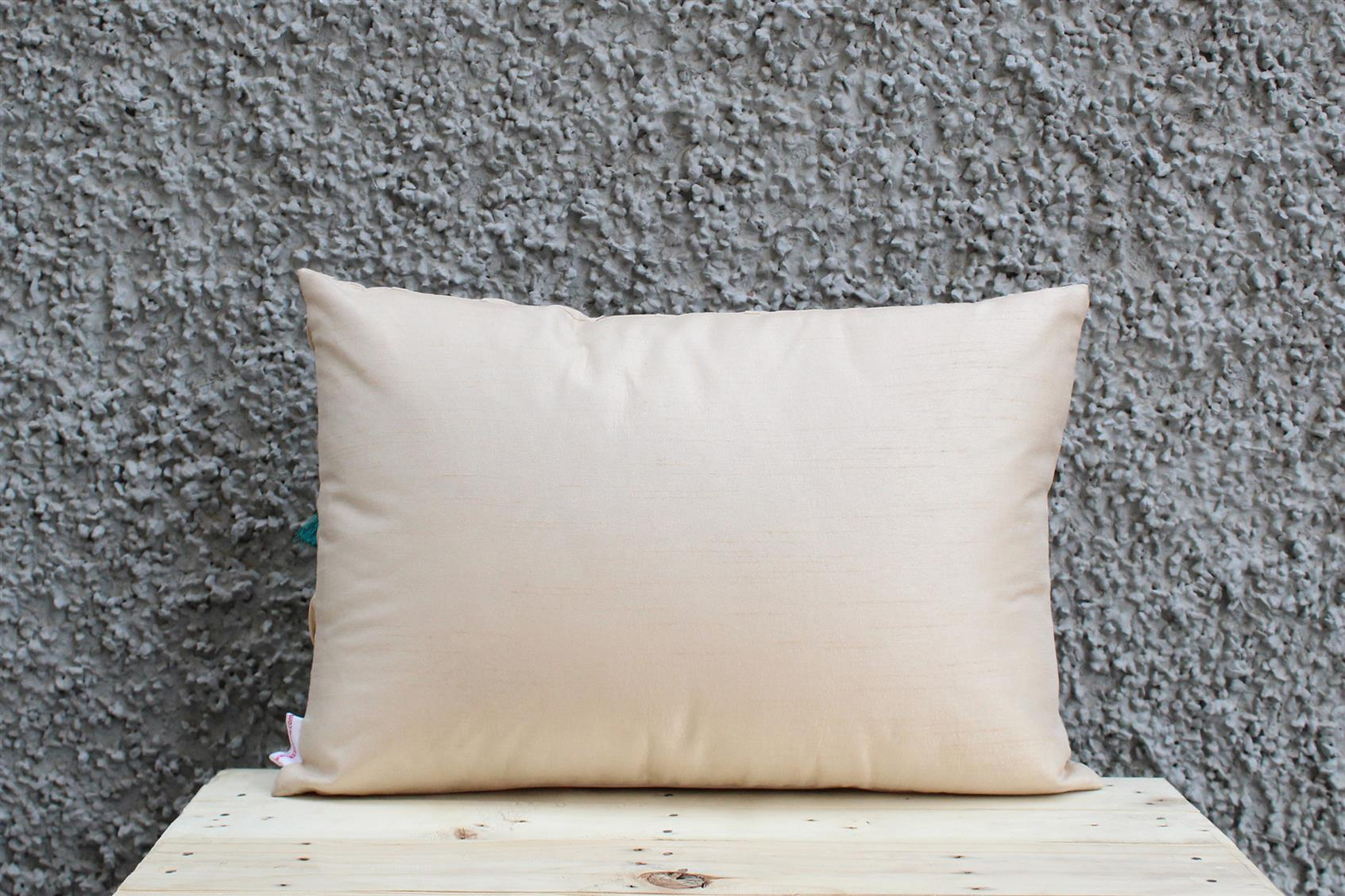 Cream Tassel Cushion Cover